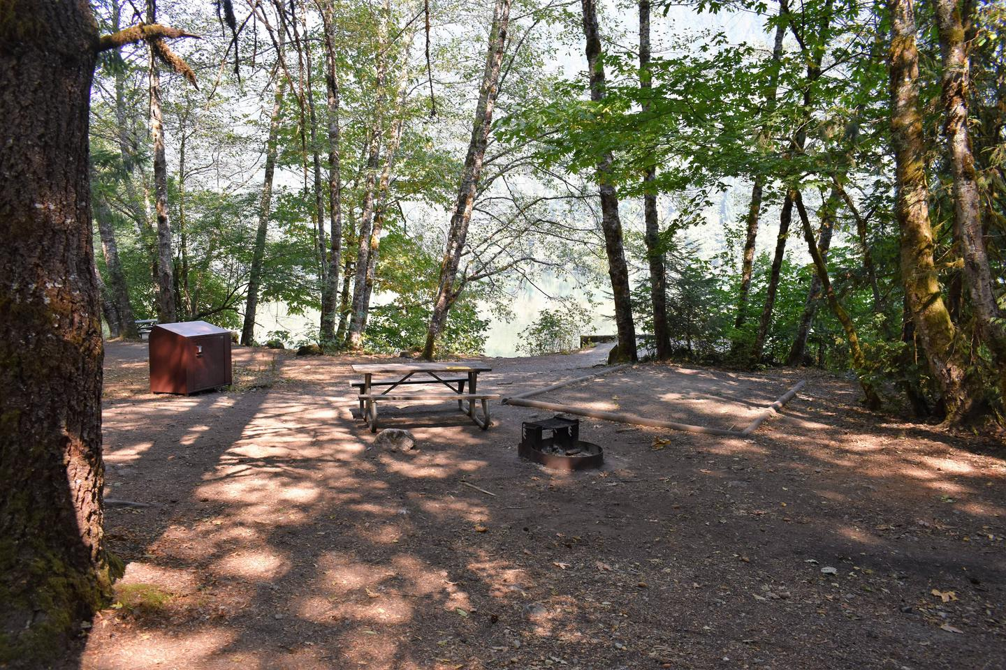 Food storage locker, picnic table, fire ring, and tent padView of campsite