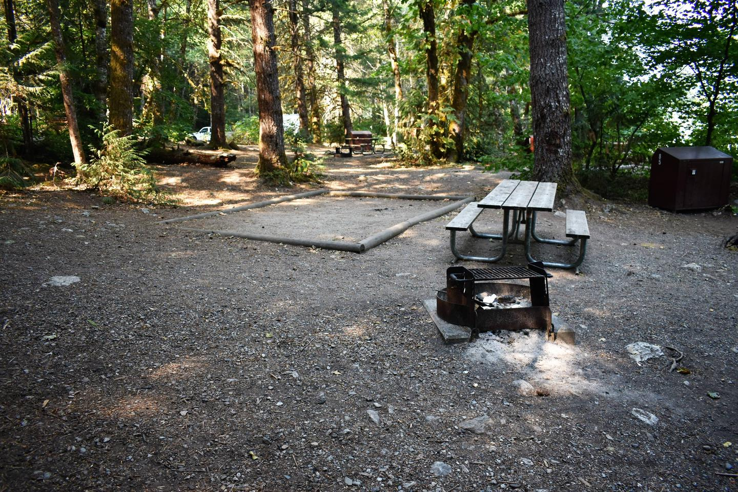 Tent pad, picnic table, fire ring, and food storage lockerView of campsite