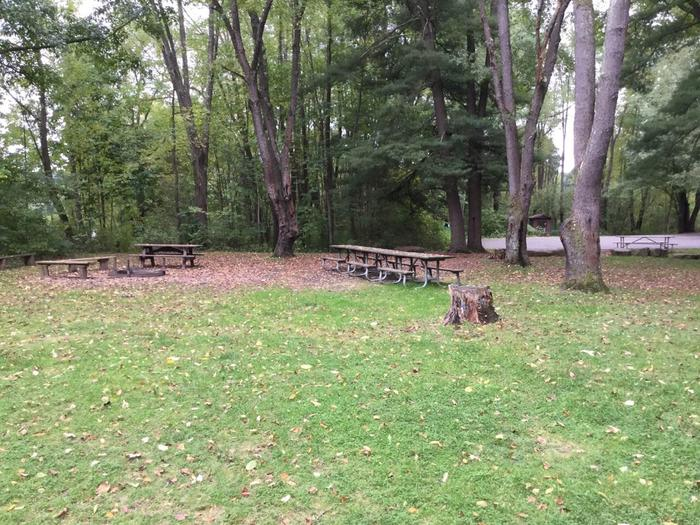 Buckaloons Recreation Area: Group Site 1