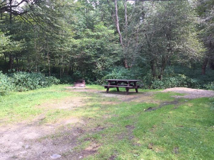 Buckaloons Recreation Area: Campsite 27