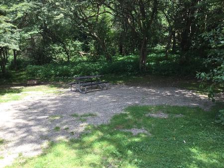 Buckaloons Recreation Area: Campsite 31