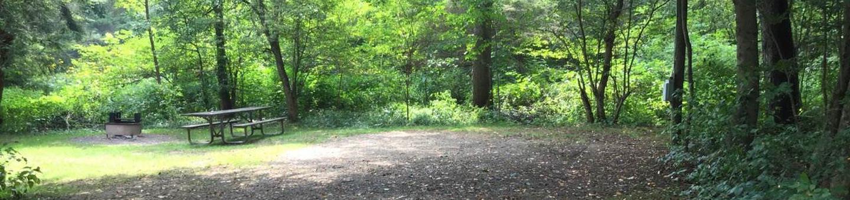 Buckaloons Recreation Area: Campsite 33