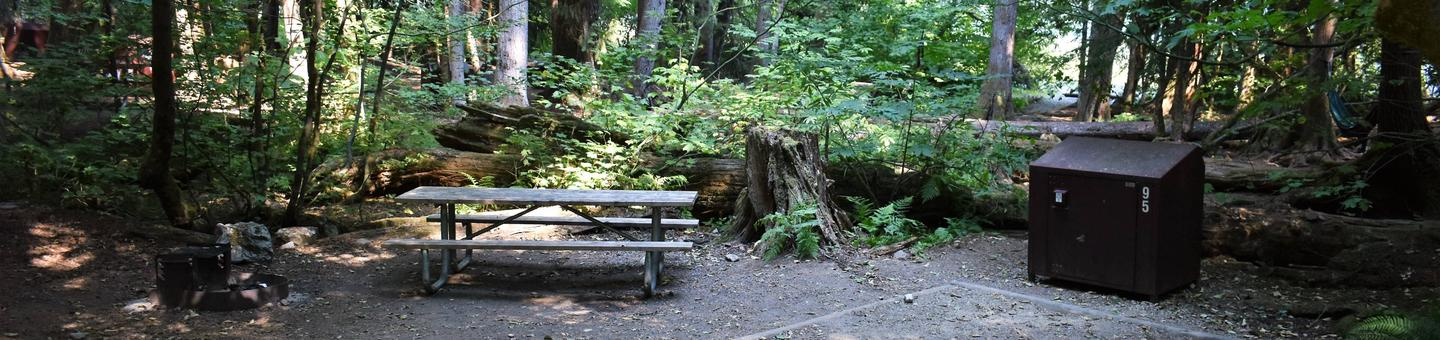 Fire ring, picnic table, and food storage lockerView of campsite