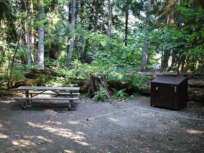 Picnic table, and food storage lockerView of campsite
