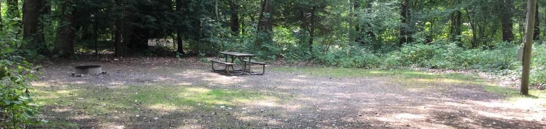 Buckaloons Recreation Area: Campsite 36