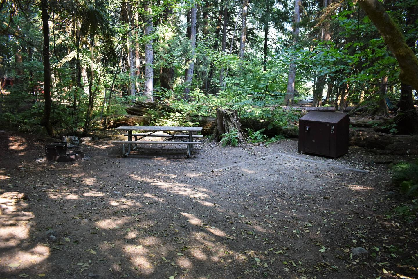 Fire ring, picnic table, tent area, and food storage lockerView of campsite
