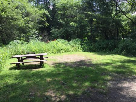 Buckaloons Recreation Area: Campsite 37