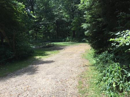 Buckaloons Recreation Area: Campsite 38