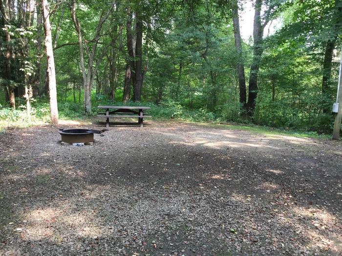 Buckaloons Recreation Area: Campsite 39