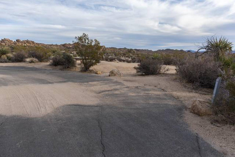 Cottonwood Site A11Beautiful Views