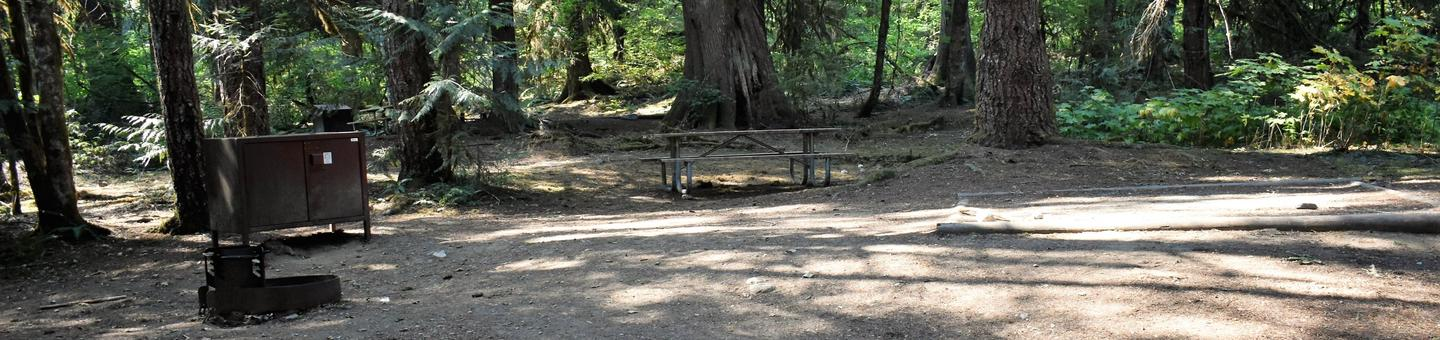 Fire ring, food storage locker, picnic table, and tent padView of campsite