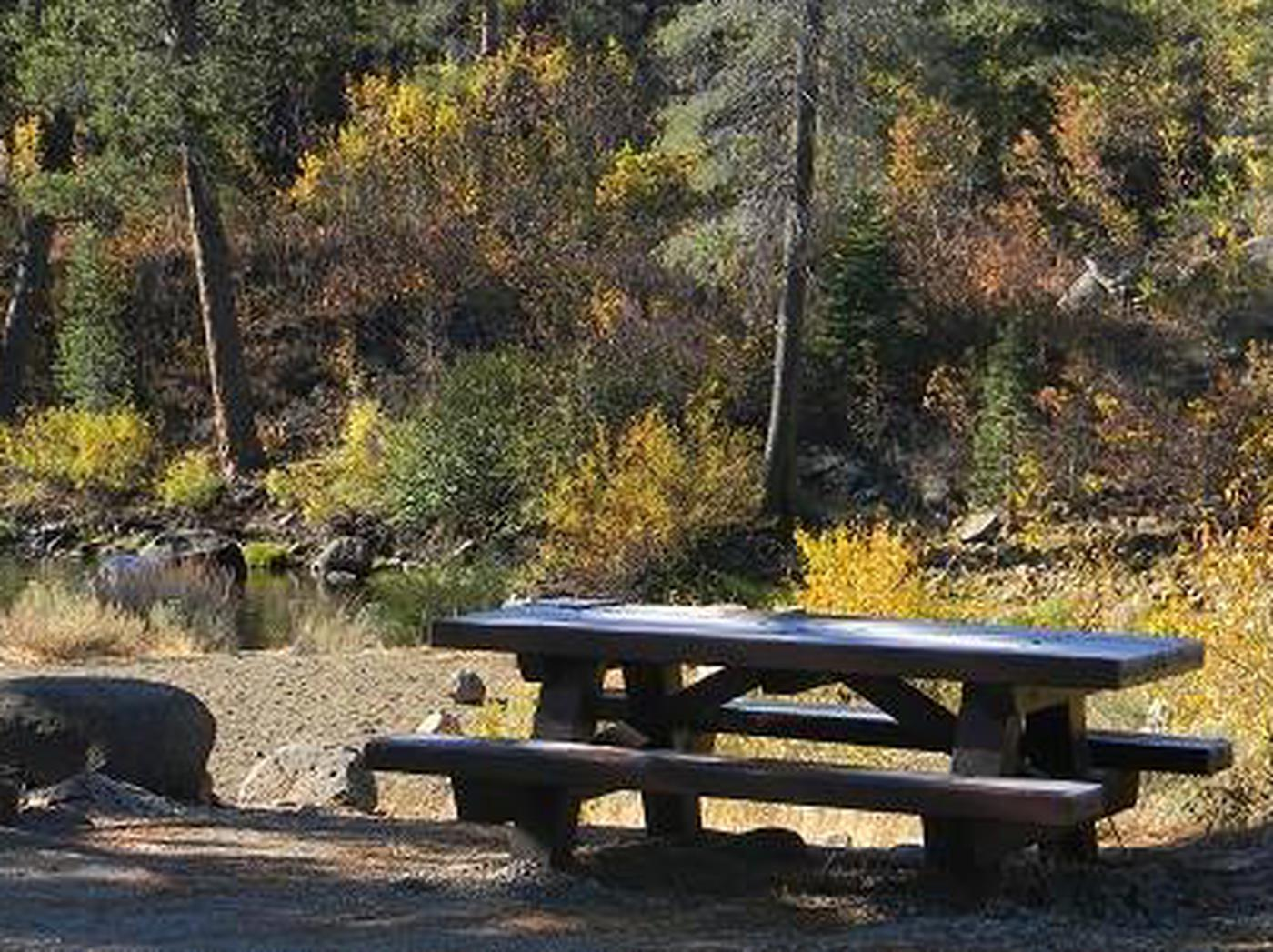 Picnic table next to the Little Truckee RiverLower Little Truckee Campsite along the Truckee River in the fall