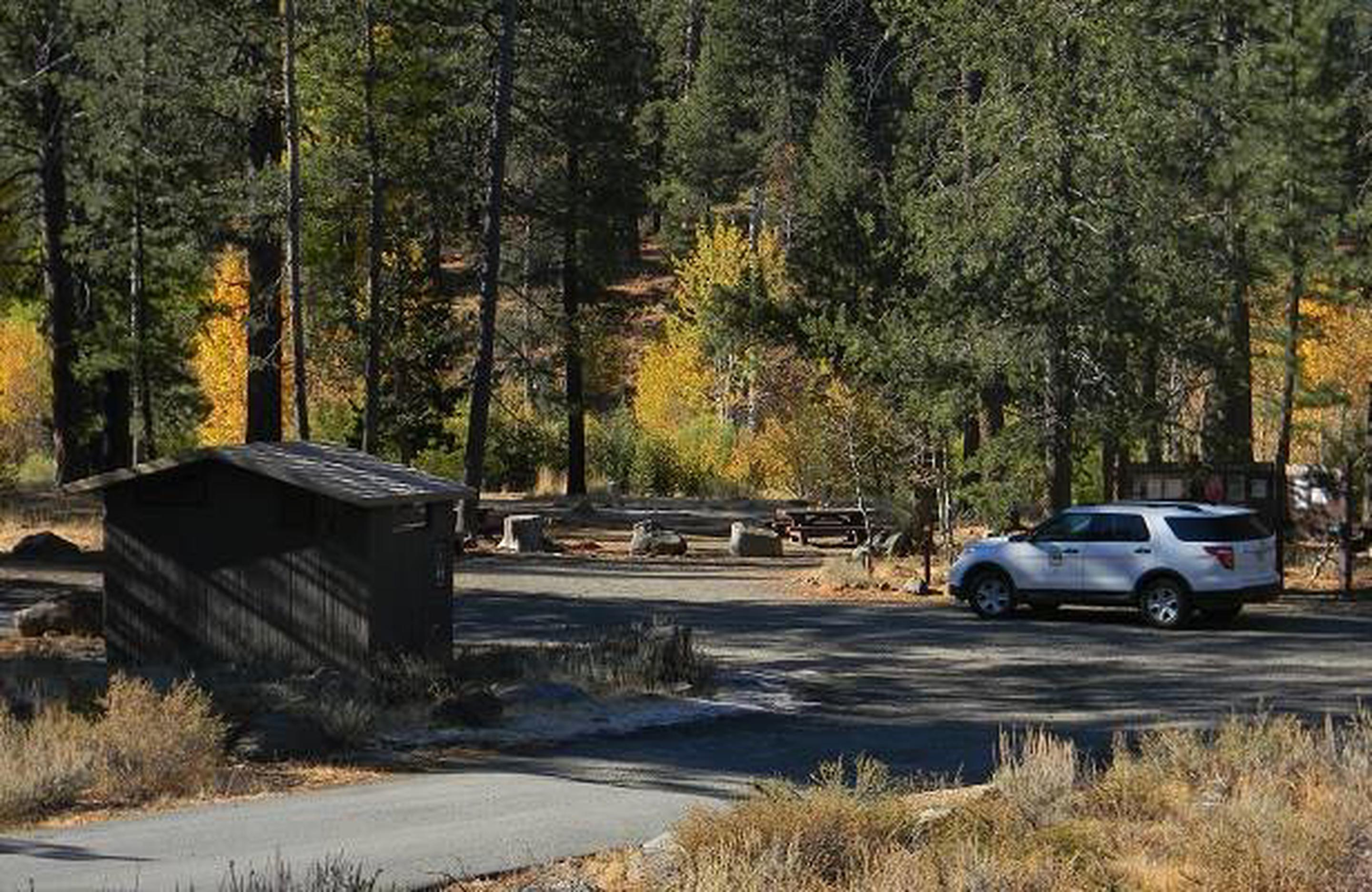 Road leading into Lower Little Truckee Campground.