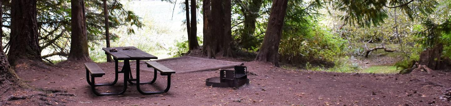 Picnic table, tent pad, and fire ringView of campsite