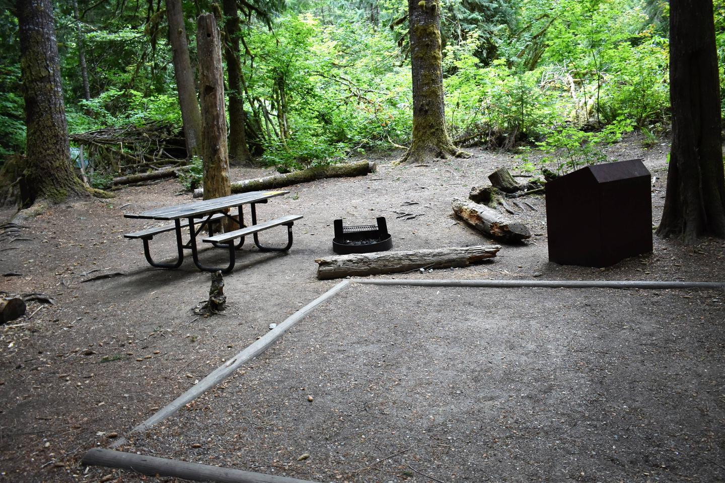 Picnic table, fire ring, tent pad, and food storage lockerView of campsite