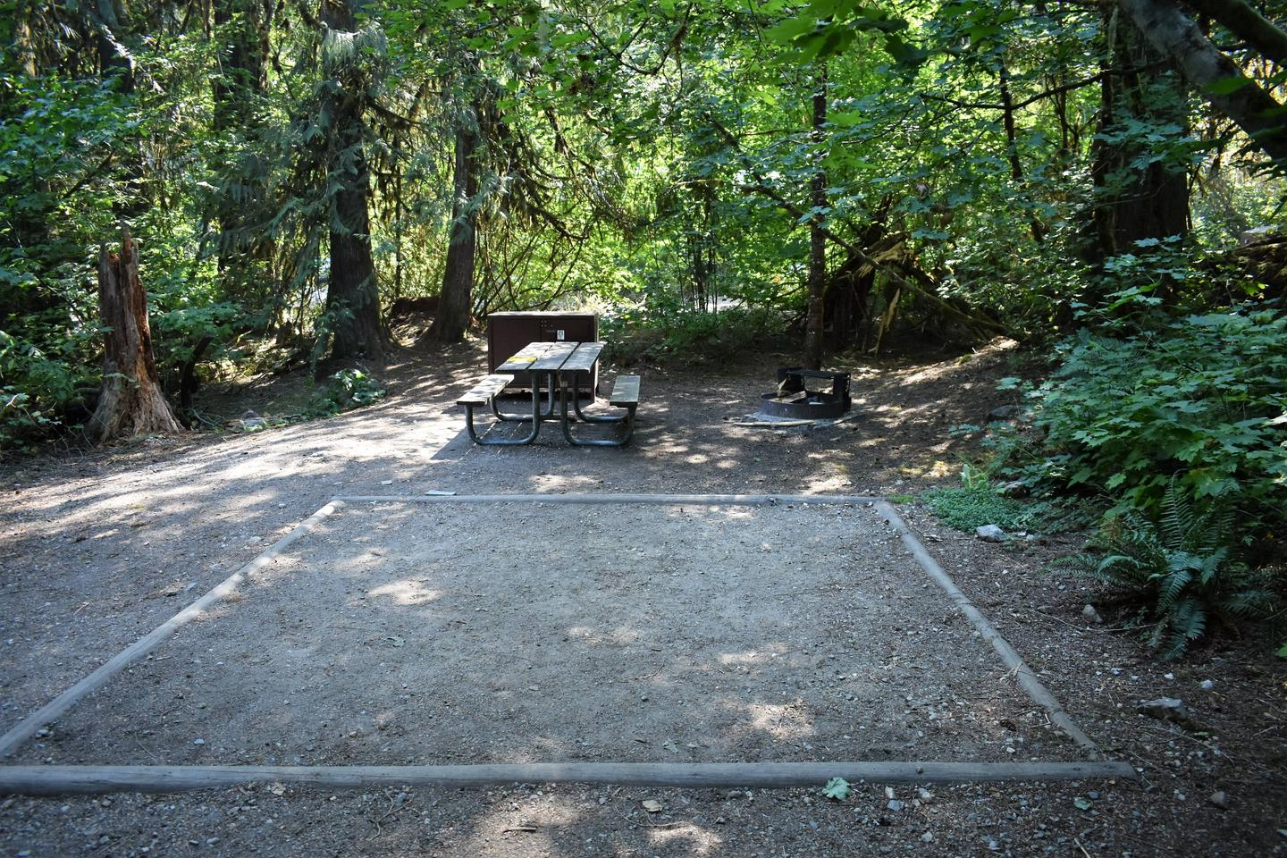 Tent pad, picnic table, food storage locker, and fire ringView of campsite