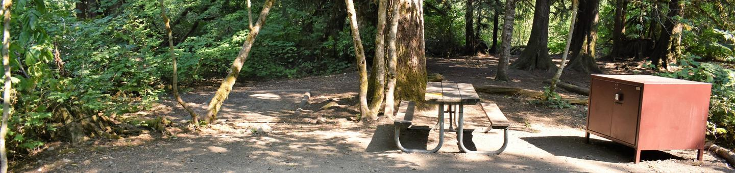 Tent area, picnic table, and food storage lockerView of campsite