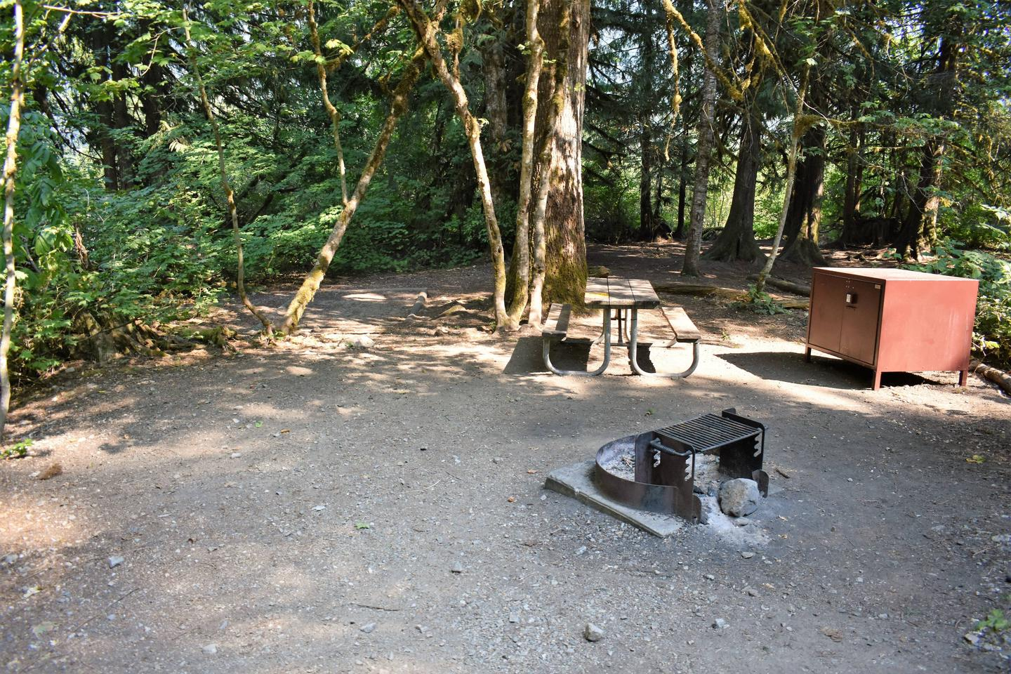 Tent area, picnic table, fire ring, and food storage lockerView of campsite