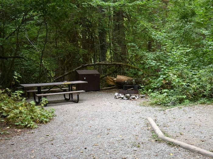 Picnic table, food storage locker, fire ring, and tent padView of campsite