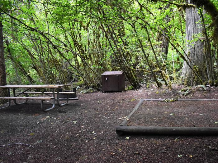 Picnic table, food storage locker, and tent padView of campsite