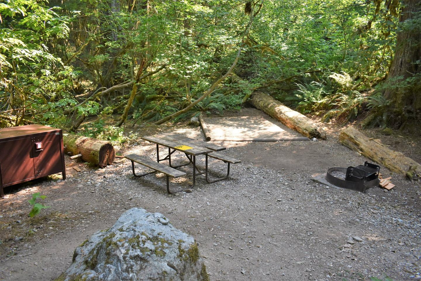 Food storage locker, picnic table, tent pad, and fire ringView of campsite