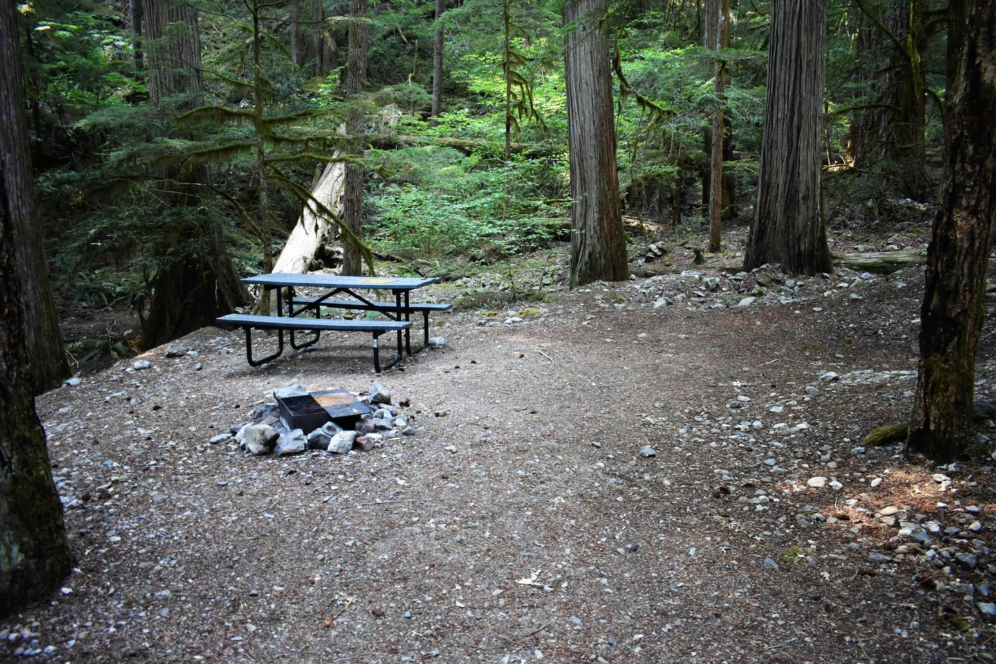 Picnic table, fire ring, and tent areaView of campsite