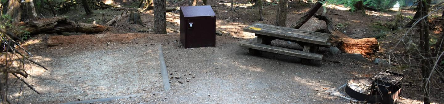 Tent pad, food storage locker, picnic table, and fire ringView of campsite