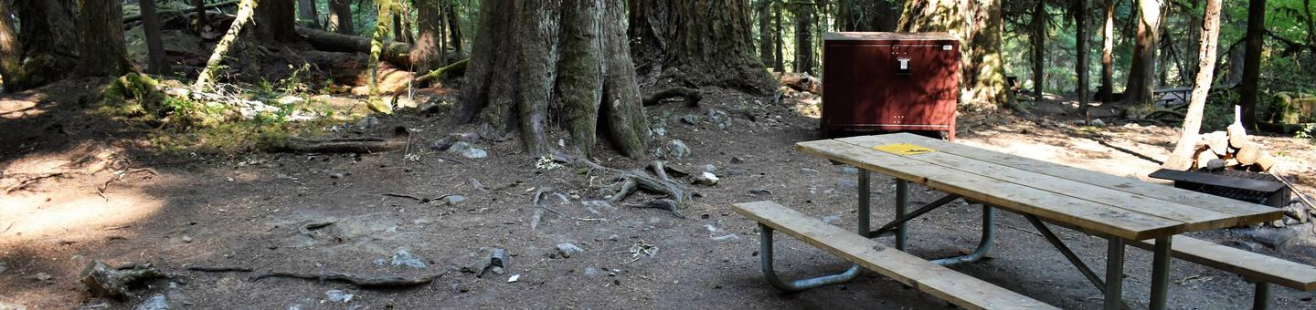Food storage locker and picnic tableView of campsite
