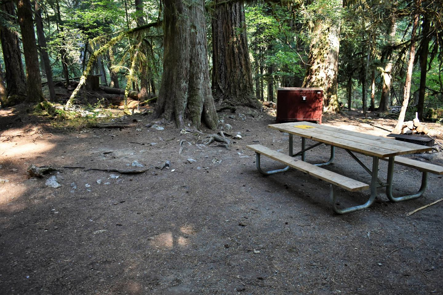 Picnic table and food storage lockerView of campsite