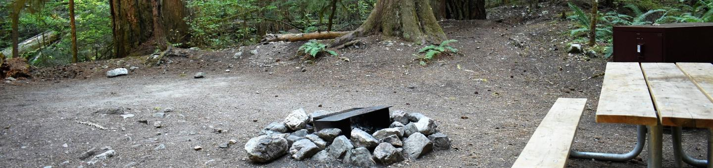 Tent area, fire ring, picnic table, and food storage lockerView of campsite