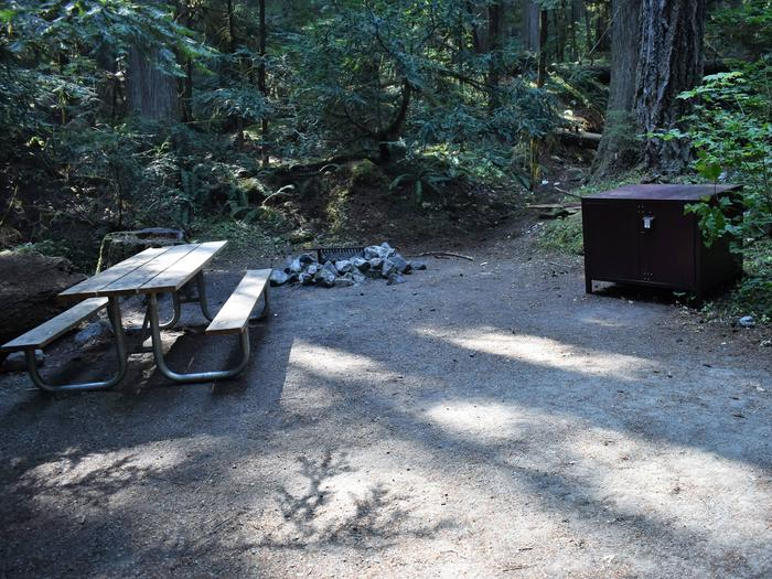 Picnic table, fire ring, and food storage lockerView of campsite