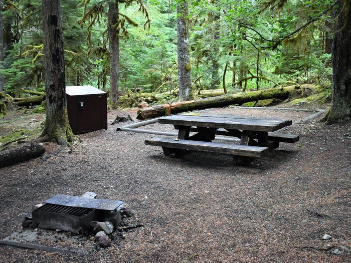 Fire ring, food storage locker, tent pad, and picnic tableView of campsite