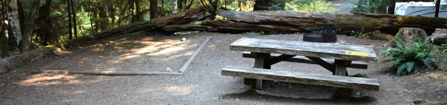 Tent pad, picnic table, and fire ringView of campsite