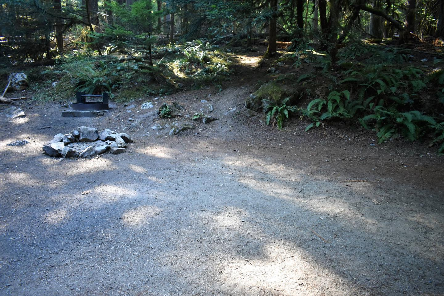Fire ring and tent areaView of campsite