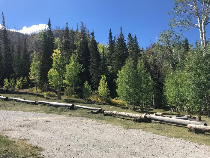 Willow Lake Campground #1