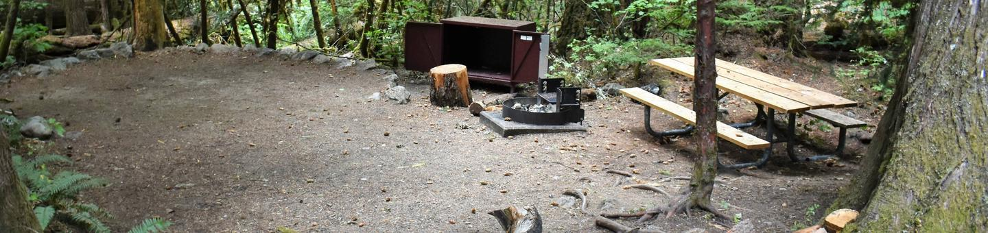 Tent pad, food storage locker, fire ring, and picnic tableView of campsite