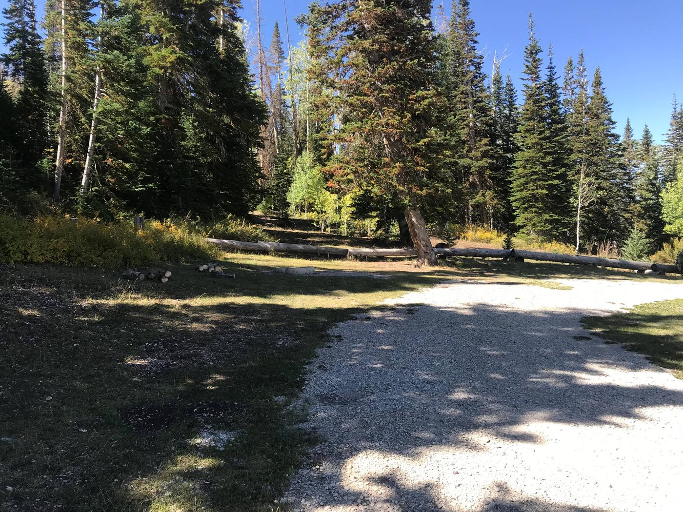 Willow Lake Campground #3