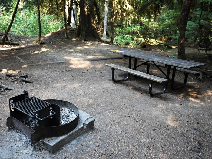 Fire ring, tent pad and picnic tableView of campsite