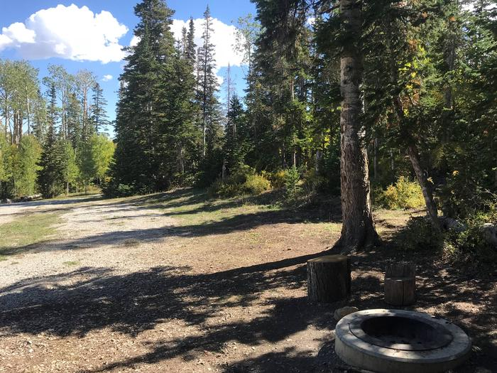 Willow Lake Campground #5