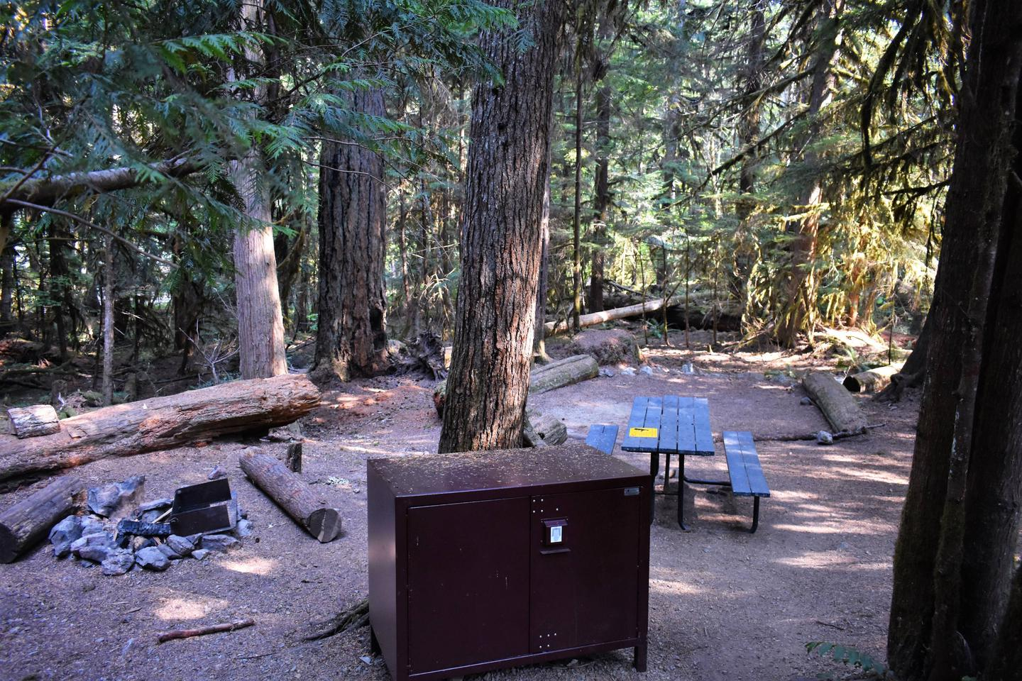 Fire ring, food storage locker, picnic table, and tent areaView of campsite