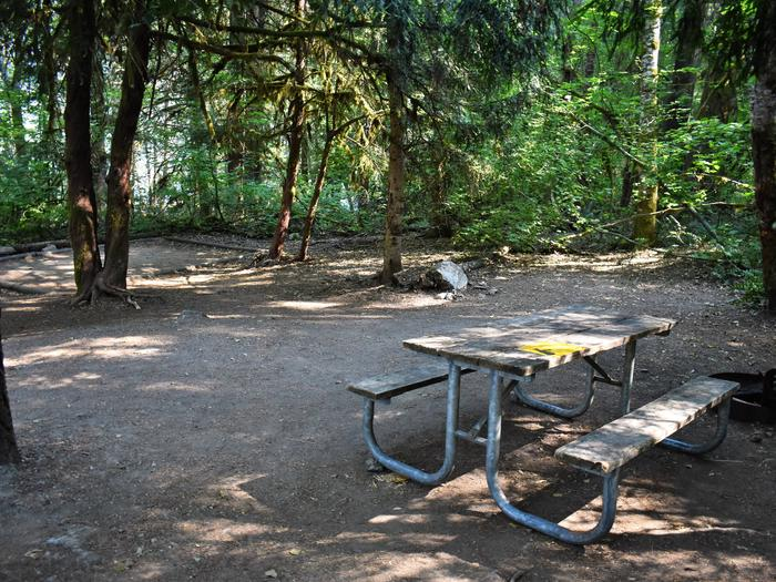 Tent pad and picnic areaView of campsite