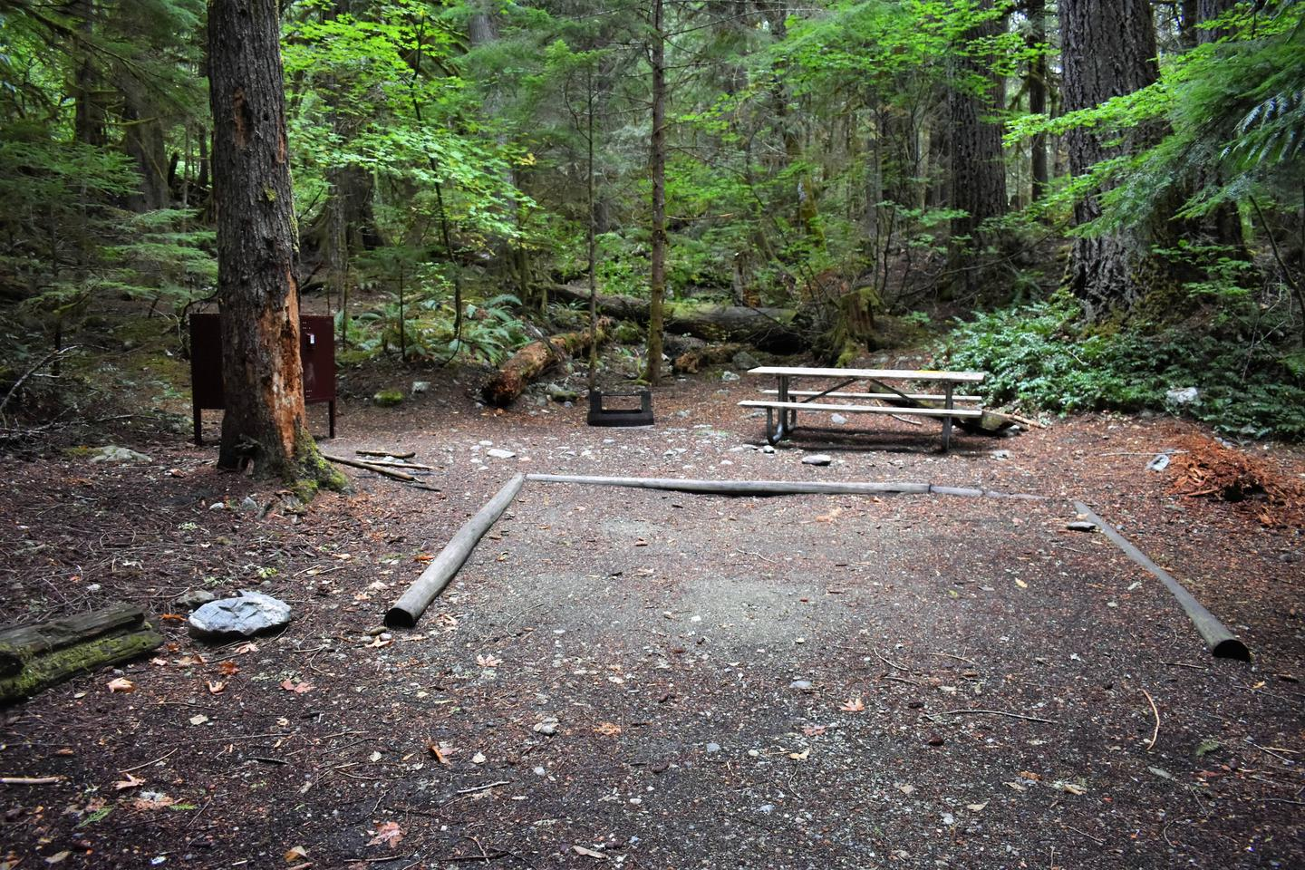 Food storage locker, fire ring, tent pad, and picnic tableView of campsite