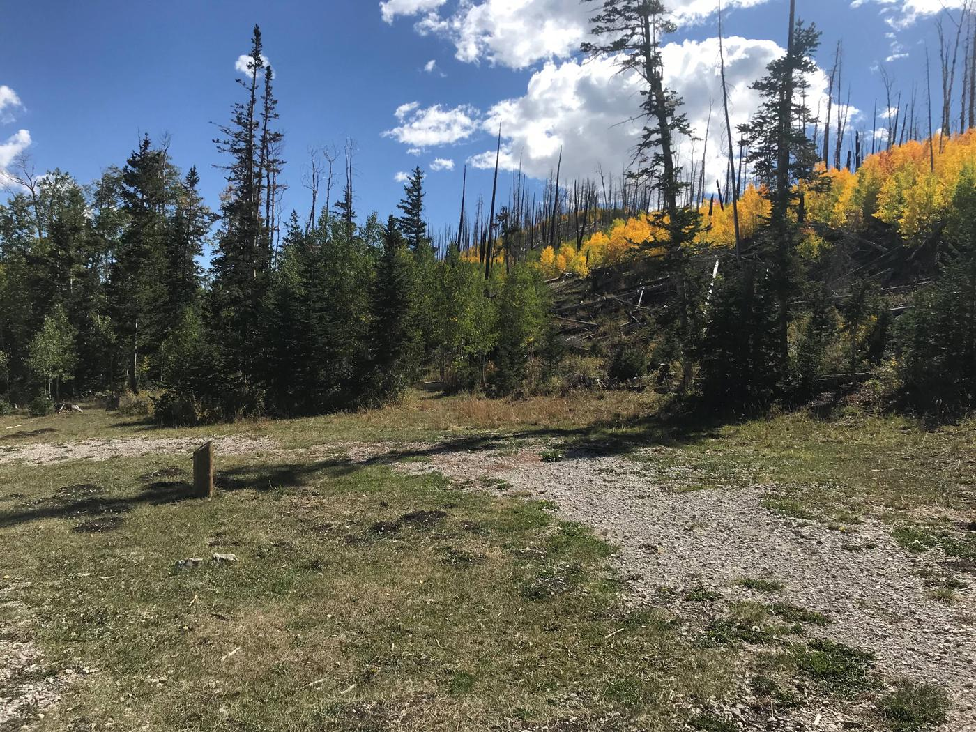 Willow Lake Campground #8