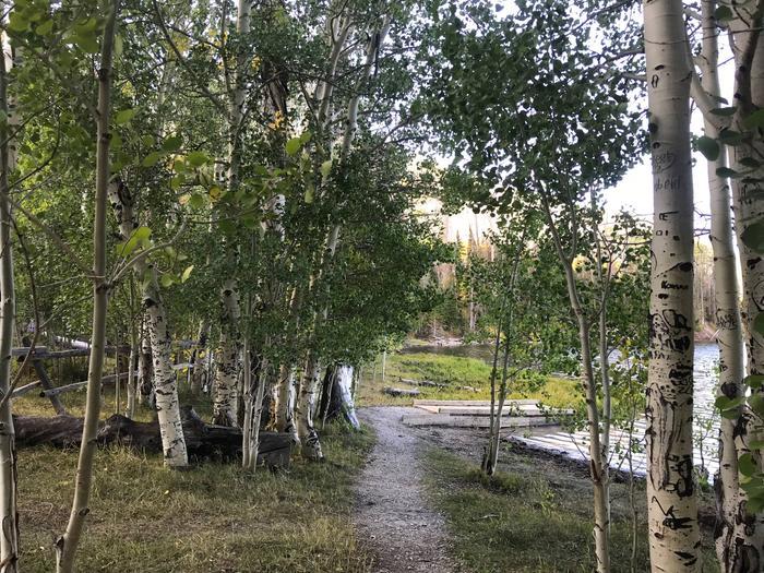 Willow Lake  CampingWillow Lake Campground