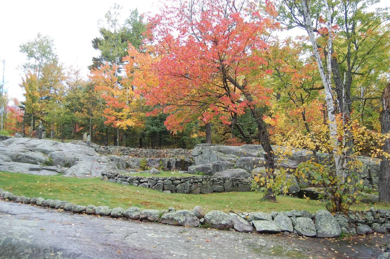 Ellsworth Rock GardensFall colors at Ellsworth Rock Gardens