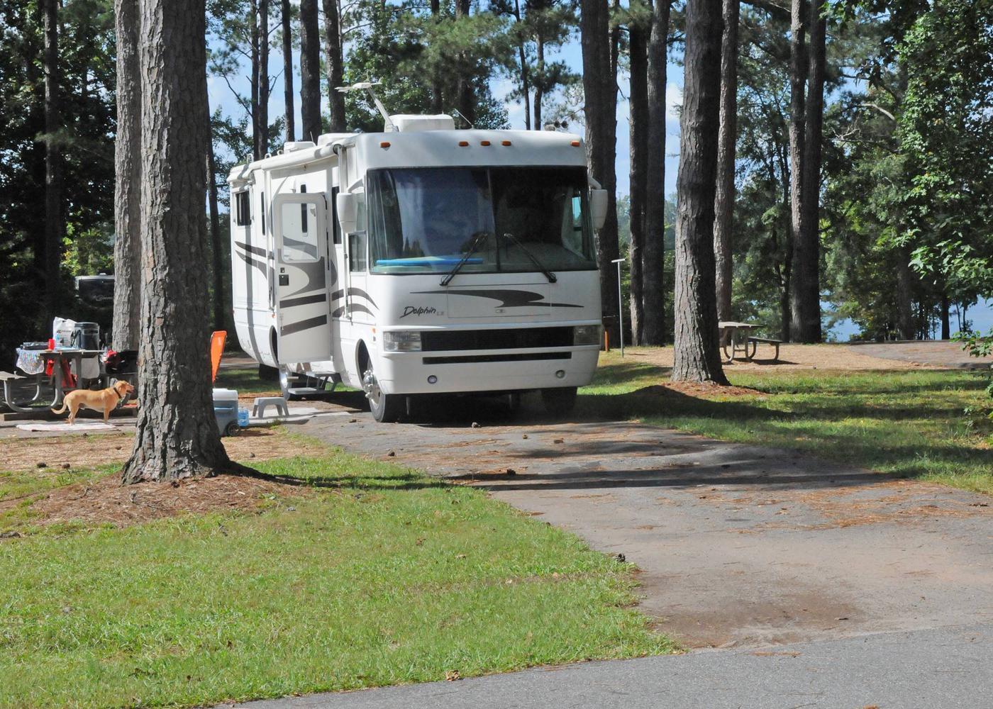Victoria Campground Site 29