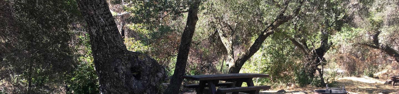 Wheeler Gorge Site 15