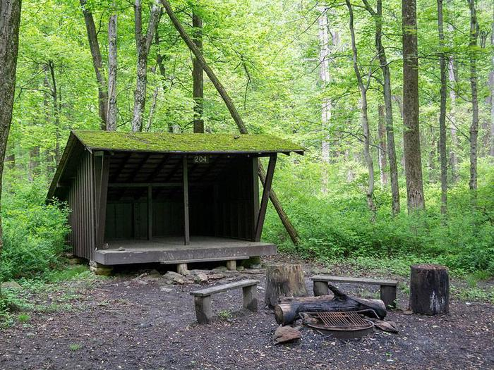 adirondack shelter with fire ring and wooden benches