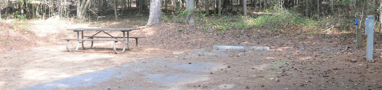 Victoria Campground Site 41