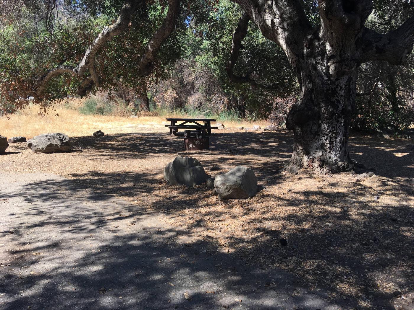 Wheeler Gorge Site 22